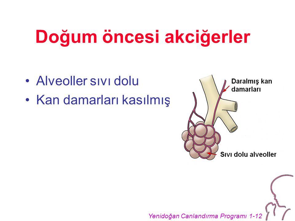 Yenidoğan Canlandırma Programı 1-12 Doğum öncesi akciğerler Alveoller sıvı dolu Kan damarları kasılmış