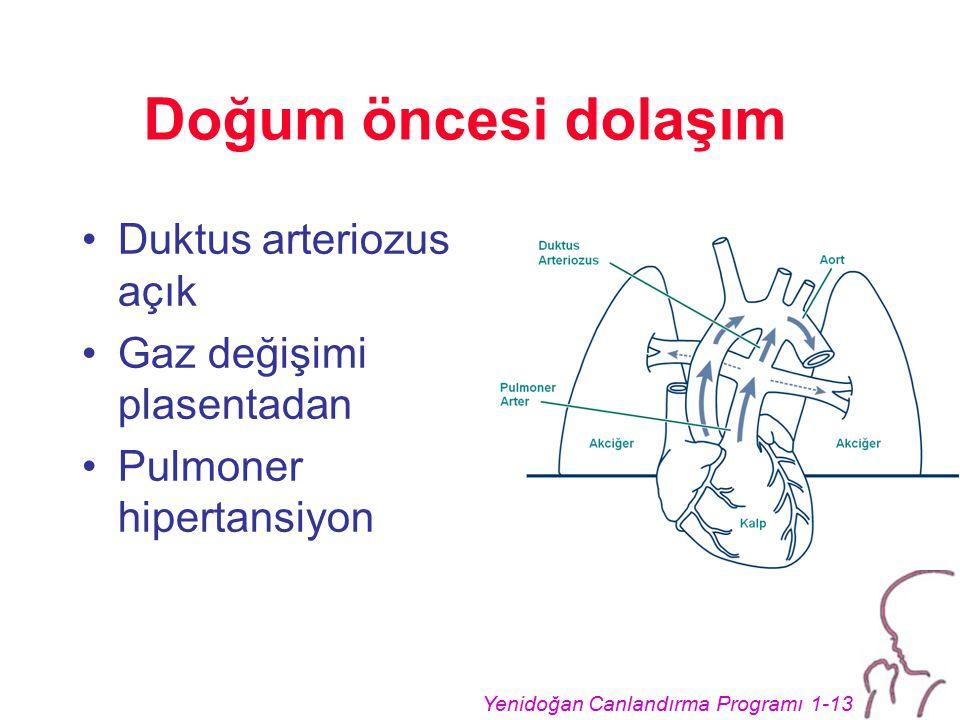 Yenidoğan Canlandırma Programı 1-13 Doğum öncesi dolaşım Duktus arteriozus açık Gaz değişimi plasentadan Pulmoner hipertansiyon