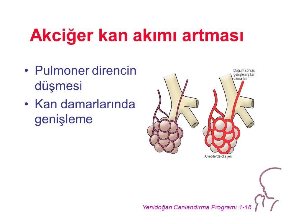 Yenidoğan Canlandırma Programı 1-16 Akciğer kan akımı artması Pulmoner direncin düşmesi Kan damarlarında genişleme