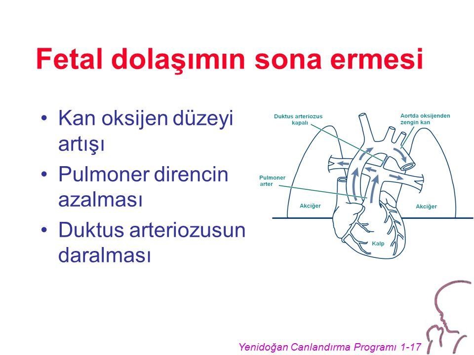 Yenidoğan Canlandırma Programı 1-17 Fetal dolaşımın sona ermesi Kan oksijen düzeyi artışı Pulmoner direncin azalması Duktus arteriozusun daralması