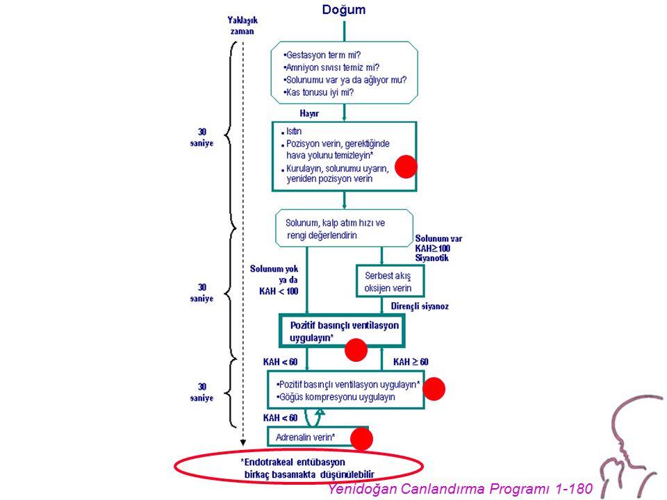 Yenidoğan Canlandırma Programı 1-180
