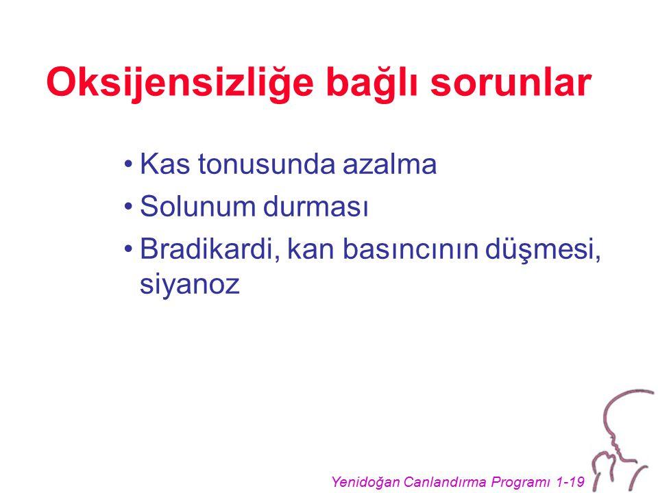 Yenidoğan Canlandırma Programı 1-19 Oksijensizliğe bağlı sorunlar Kas tonusunda azalma Solunum durması Bradikardi, kan basıncının düşmesi, siyanoz