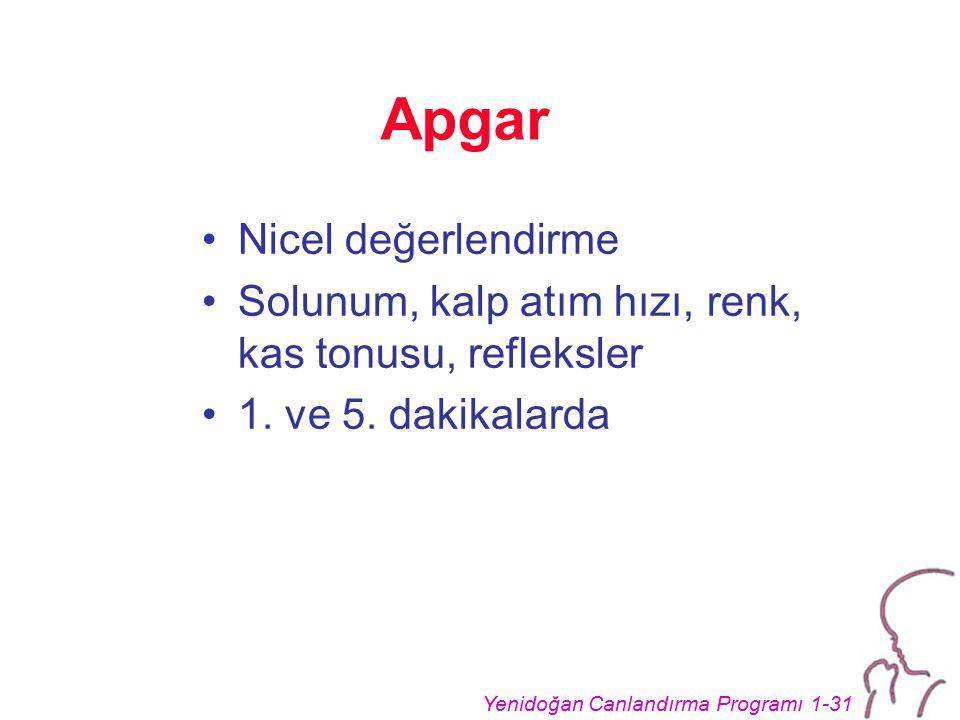 Yenidoğan Canlandırma Programı 1-31 Apgar Nicel değerlendirme Solunum, kalp atım hızı, renk, kas tonusu, refleksler 1. ve 5. dakikalarda