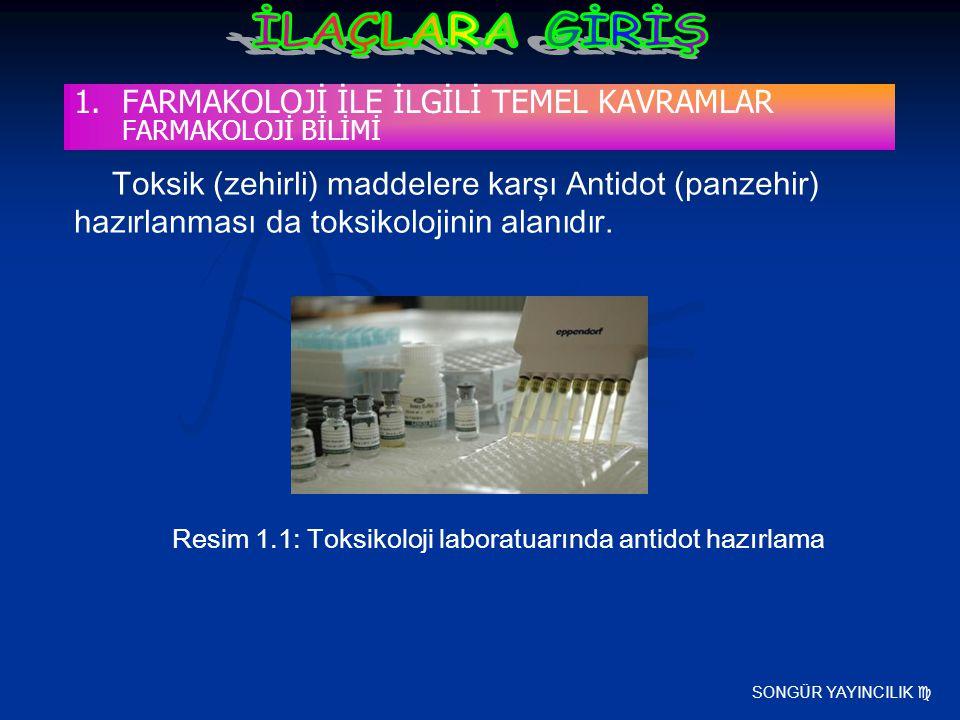 SONGÜR YAYINCILIK  Toksik (zehirli) maddelere karşı Antidot (panzehir) hazırlanması da toksikolojinin alanıdır. Resim 1.1: Toksikoloji laboratuarında