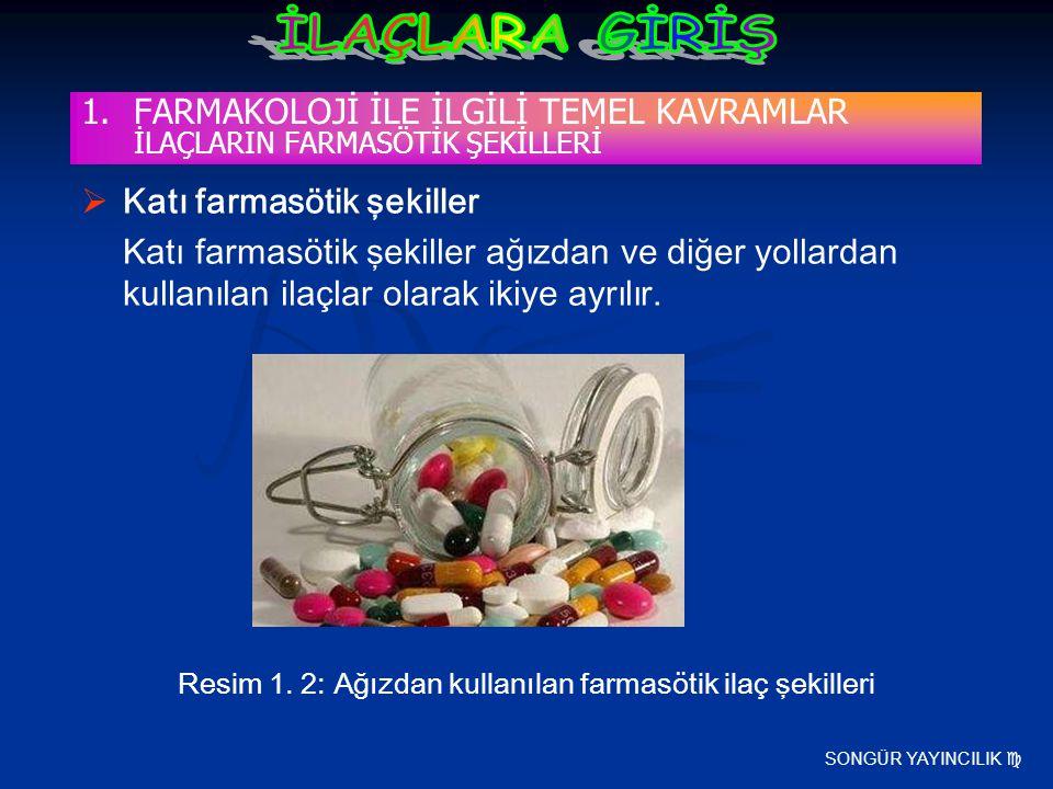 SONGÜR YAYINCILIK   Katı farmasötik şekiller Katı farmasötik şekiller ağızdan ve diğer yollardan kullanılan ilaçlar olarak ikiye ayrılır. Resim 1. 2