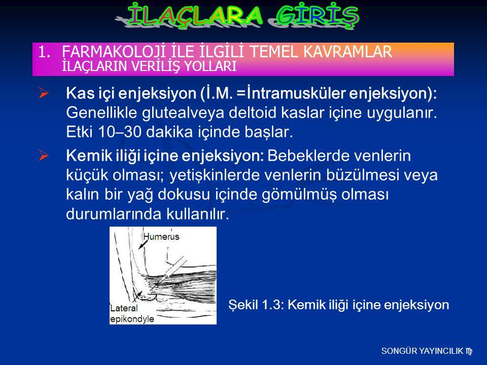 SONGÜR YAYINCILIK  1.FARMAKOLOJİ İLE İLGİLİ TEMEL KAVRAMLAR İLAÇLARIN VERİLİŞ YOLLARI  Kas içi enjeksiyon (İ.M. =İntramusküler enjeksiyon): Genellik