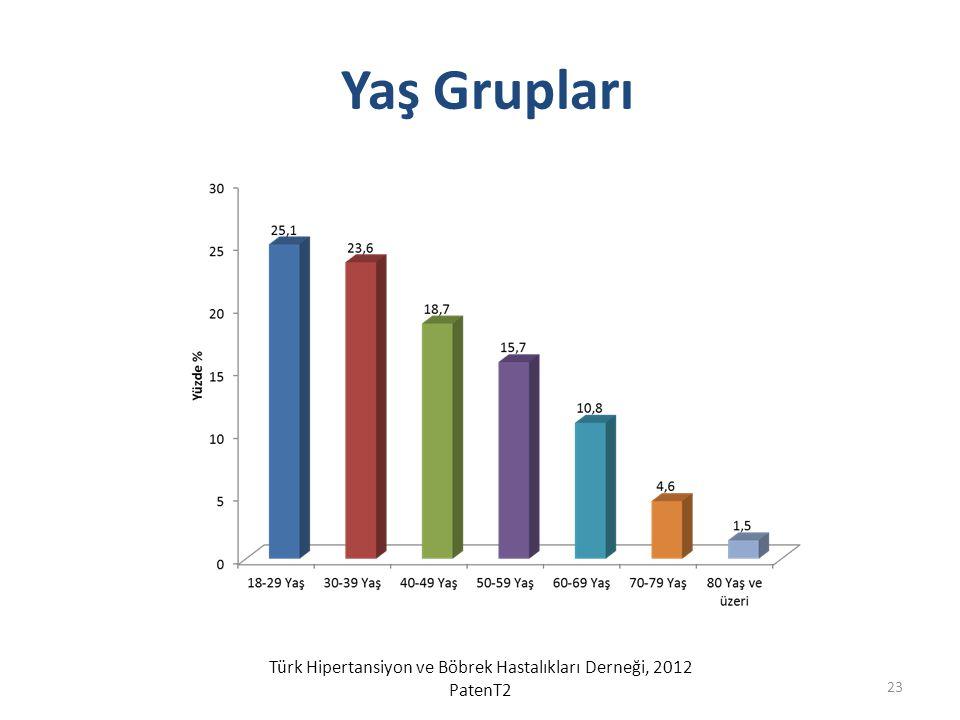 Yaş Grupları Türk Hipertansiyon ve Böbrek Hastalıkları Derneği, 2012 PatenT2 23
