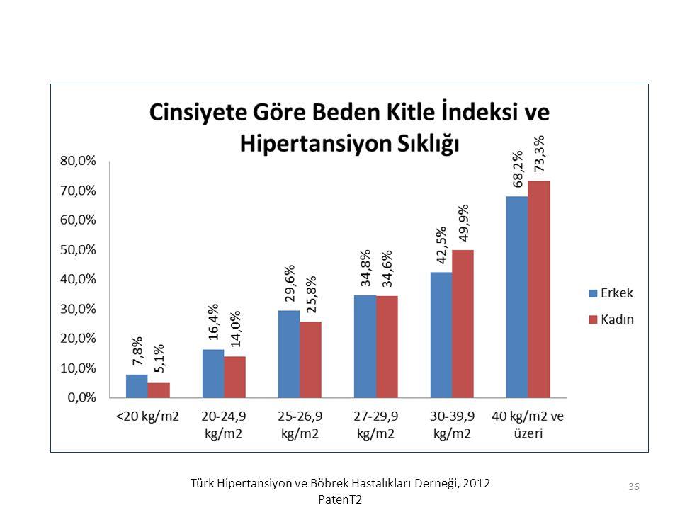 Türk Hipertansiyon ve Böbrek Hastalıkları Derneği, 2012 PatenT2 36