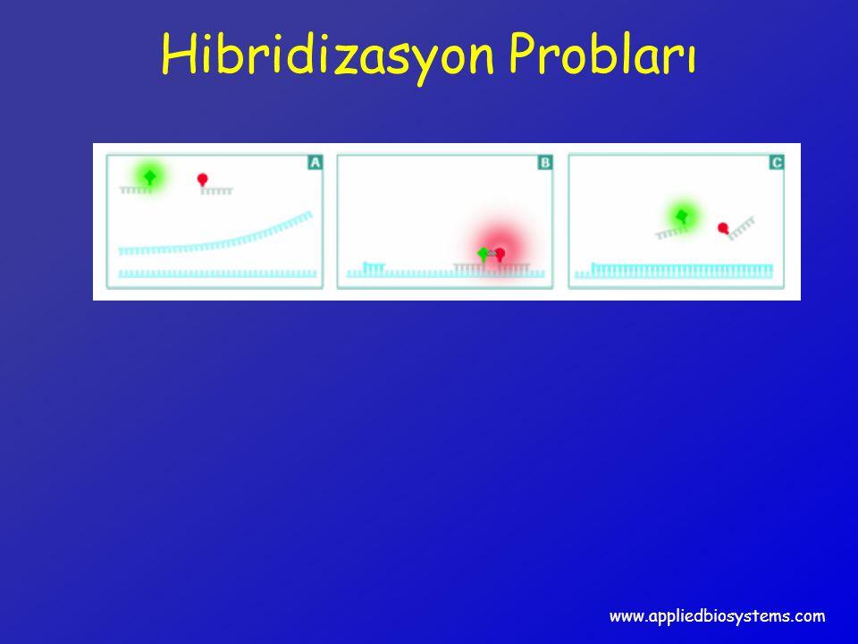 Hibridizasyon Probları www.appliedbiosystems.com