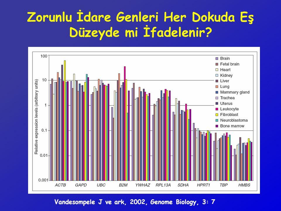 Zorunlu İdare Genleri Her Dokuda Eş Düzeyde mi İfadelenir? Vandesompele J ve ark, 2002, Genome Biology, 3: 7