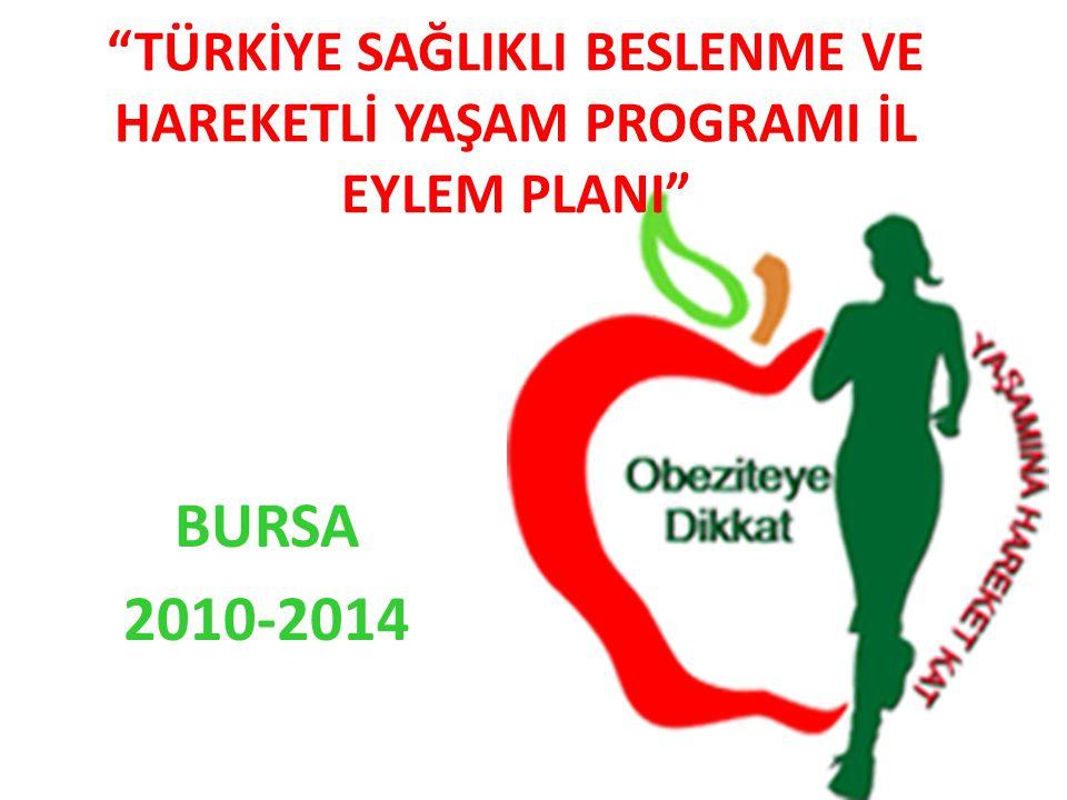 """""""TÜRKİYE SAĞLIKLI BESLENME VE HAREKETLİ YAŞAM PROGRAMI İL EYLEM PLANI"""" BURSA 2010-2014"""