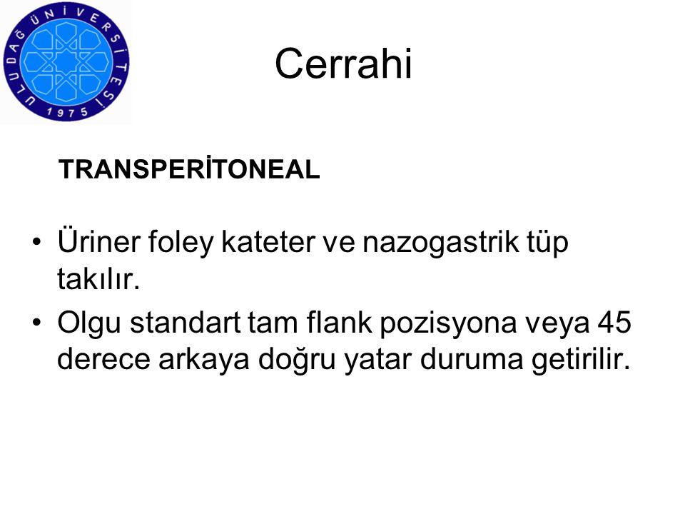 İlginize teşekkür ederim Prof.Dr.Bülent Oktay
