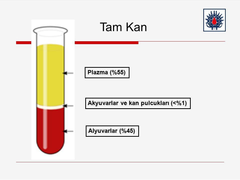 Plazma (%55) Akyuvarlar ve kan pulcukları (<%1) Alyuvarlar (%45) Tam Kan