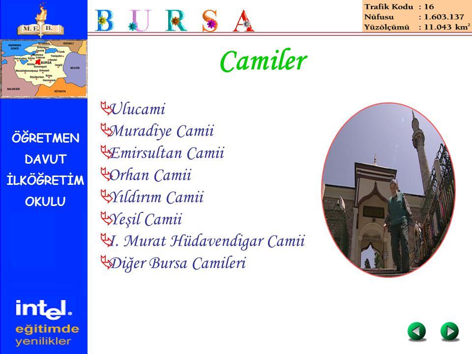 ÖĞRETMEN DAVUT İLKÖĞRETİM OKULU Camiler  Ulucami  Muradiye Camii  Emirsultan Camii  Orhan Camii  Yıldırım Camii  Yeşil Camii  I. Murat Hüdavend
