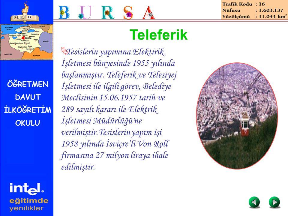 ÖĞRETMEN DAVUT İLKÖĞRETİM OKULU Teleferik  Tesislerin yapımına Elektirik İşletmesi bünyesinde 1955 yılında başlanmıştır. Teleferik ve Telesiyej İşlet