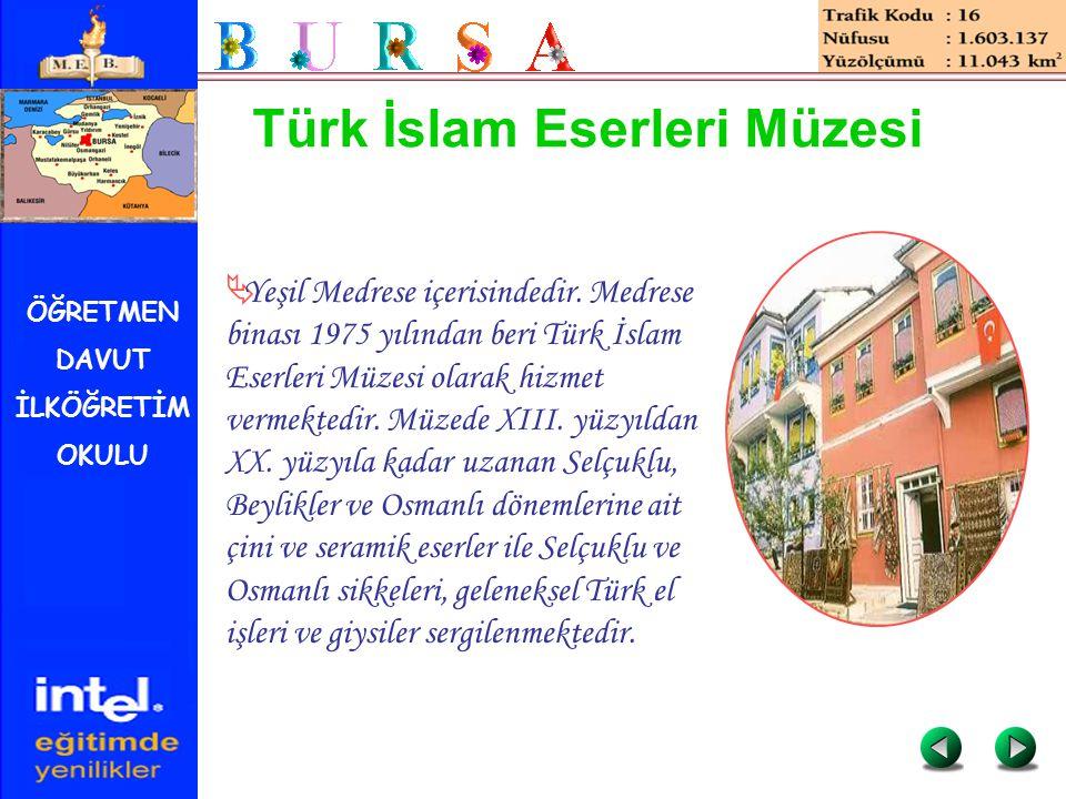 ÖĞRETMEN DAVUT İLKÖĞRETİM OKULU Türk İslam Eserleri Müzesi  Yeşil Medrese içerisindedir. Medrese binası 1975 yılından beri Türk İslam Eserleri Müzesi