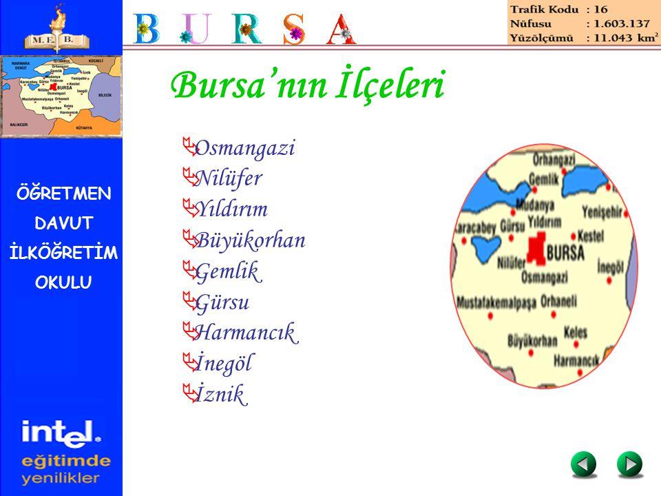 ÖĞRETMEN DAVUT İLKÖĞRETİM OKULU Bursa'nın İlçeleri  Osmangazi  Nilüfer  Yıldırım  Büyükorhan  Gemlik  Gürsu  Harmancık  İnegöl  İznik