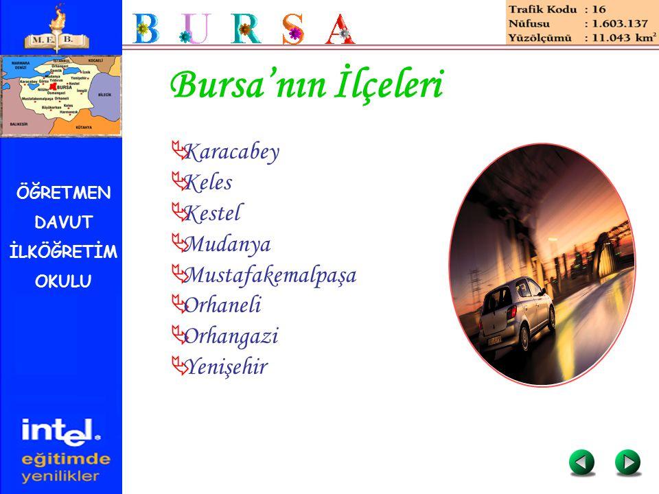 ÖĞRETMEN DAVUT İLKÖĞRETİM OKULU Bursa'nın İlçeleri  Karacabey  Keles  Kestel  Mudanya  Mustafakemalpaşa  Orhaneli  Orhangazi  Yenişehir
