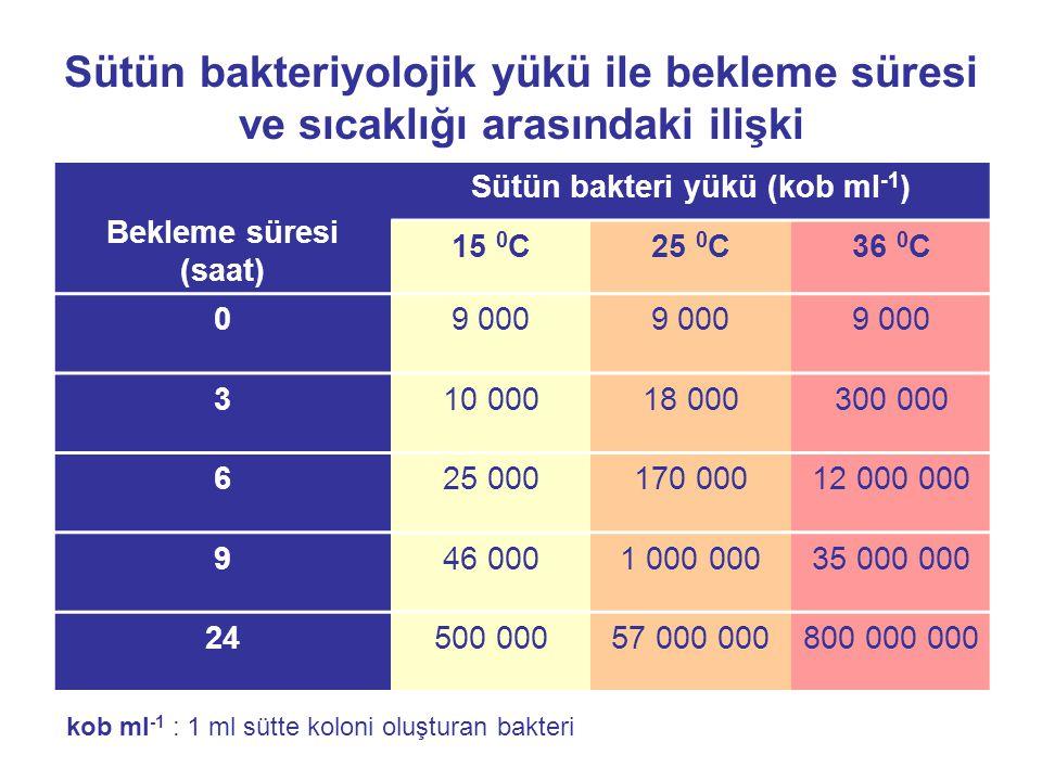 Sütün bakteriyolojik yükü ile bekleme süresi ve sıcaklığı arasındaki ilişki Bekleme süresi (saat) Sütün bakteri yükü (kob ml -1 ) 15 0 C25 0 C36 0 C 0