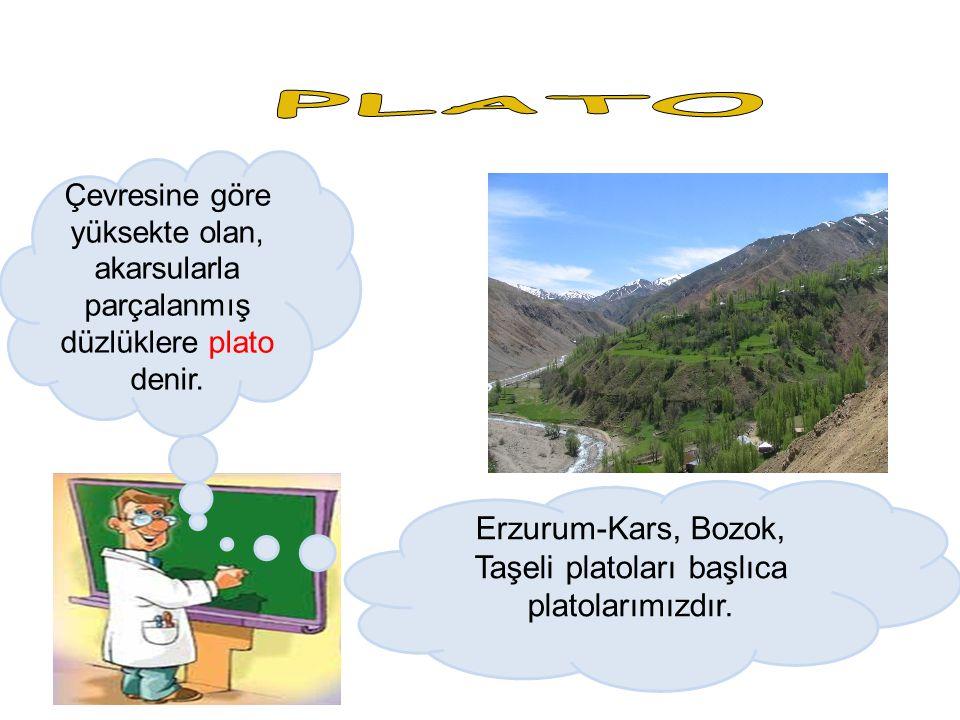 Çevresine göre yüksekte olan, akarsularla parçalanmış düzlüklere plato denir. Erzurum-Kars, Bozok, Taşeli platoları başlıca platolarımızdır.