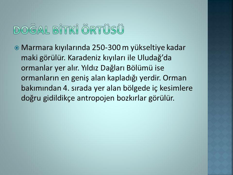  Marmara kıyılarında 250-300 m yükseltiye kadar maki görülür.