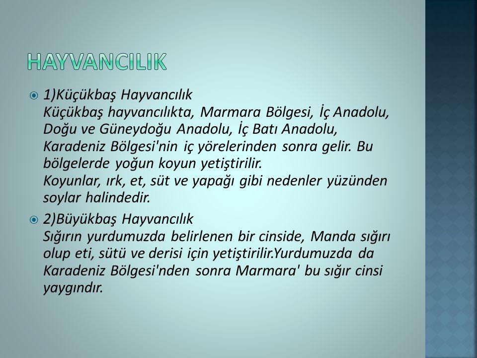  1)Küçükbaş Hayvancılık Küçükbaş hayvancılıkta, Marmara Bölgesi, İç Anadolu, Doğu ve Güneydoğu Anadolu, İç Batı Anadolu, Karadeniz Bölgesi nin iç yörelerinden sonra gelir.