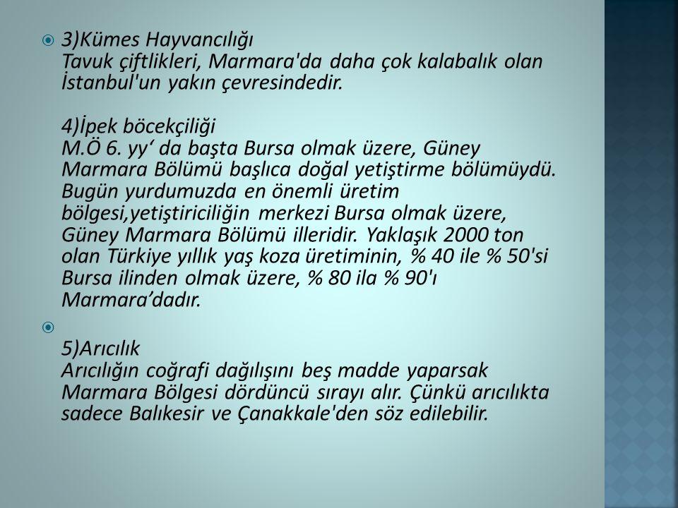  3)Kümes Hayvancılığı Tavuk çiftlikleri, Marmara da daha çok kalabalık olan İstanbul un yakın çevresindedir.