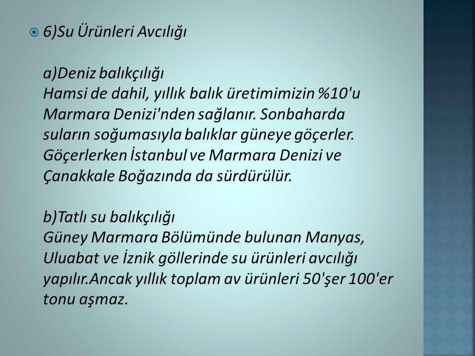  6)Su Ürünleri Avcılığı a)Deniz balıkçılığı Hamsi de dahil, yıllık balık üretimimizin %10 u Marmara Denizi nden sağlanır.