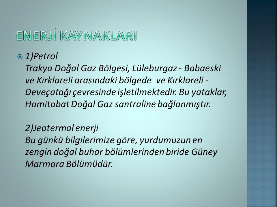  1)Petrol Trakya Doğal Gaz Bölgesi, Lüleburgaz - Babaeski ve Kırklareli arasındaki bölgede ve Kırklareli - Deveçatağı çevresinde işletilmektedir.
