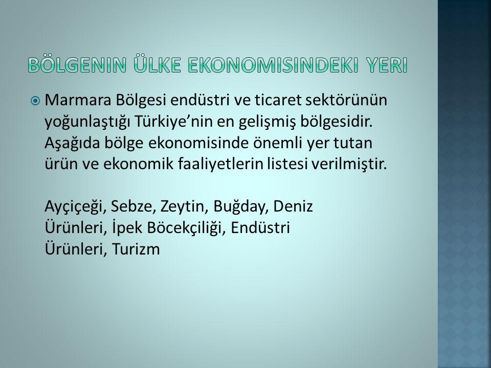  Marmara Bölgesi endüstri ve ticaret sektörünün yoğunlaştığı Türkiye'nin en gelişmiş bölgesidir.