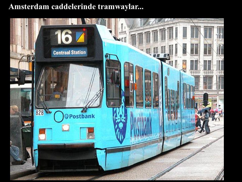 Amsterdam caddelerinde tramwaylar...