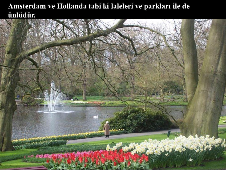 Amsterdam ve Hollanda tabi ki laleleri ve parkları ile de ünlüdür.