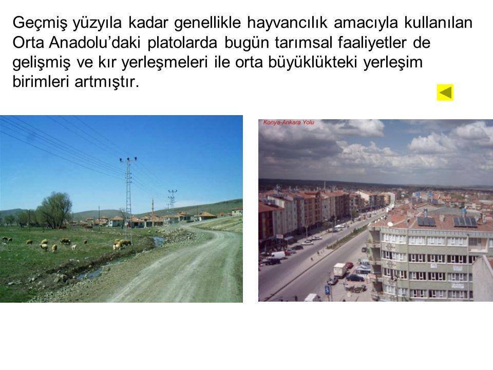 Geçmiş yüzyıla kadar genellikle hayvancılık amacıyla kullanılan Orta Anadolu'daki platolarda bugün tarımsal faaliyetler de gelişmiş ve kır yerleşmeler