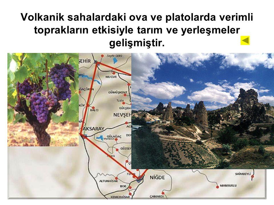 Volkanik sahalardaki ova ve platolarda verimli toprakların etkisiyle tarım ve yerleşmeler gelişmiştir.