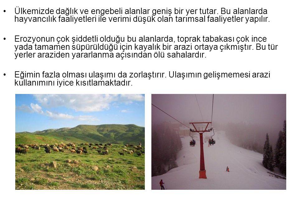 Dağlık sahadaki bazı araziler madencilik amacıyla kullanılmaktadır.