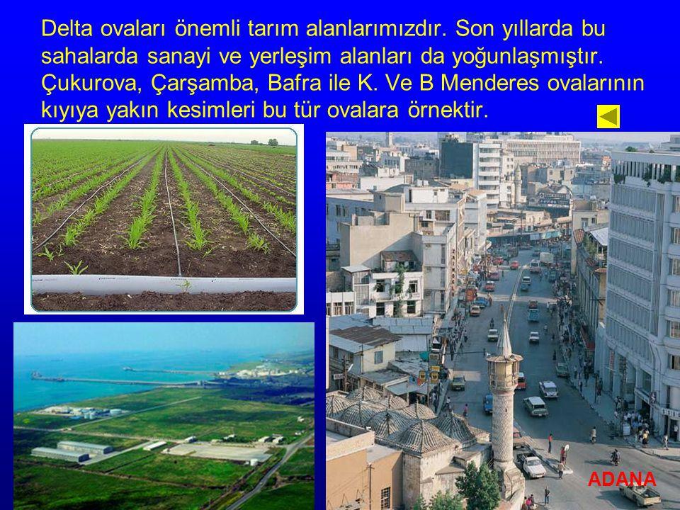 Delta ovaları önemli tarım alanlarımızdır. Son yıllarda bu sahalarda sanayi ve yerleşim alanları da yoğunlaşmıştır. Çukurova, Çarşamba, Bafra ile K. V