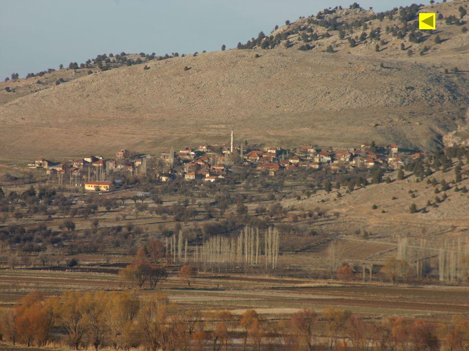 Bazı engebeli alanlar yerleşim amacıylada kullanılmaktadır.