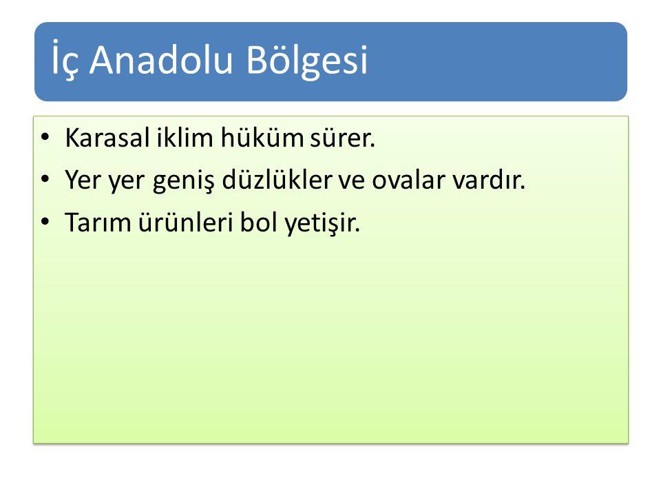 İç Anadolu Bölgesi Karasal iklim hüküm sürer.Yer yer geniş düzlükler ve ovalar vardır.