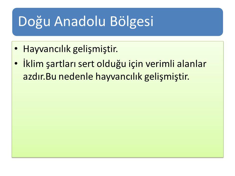 Doğu Anadolu Bölgesi Hayvancılık gelişmiştir. İklim şartları sert olduğu için verimli alanlar azdır.Bu nedenle hayvancılık gelişmiştir. Hayvancılık ge