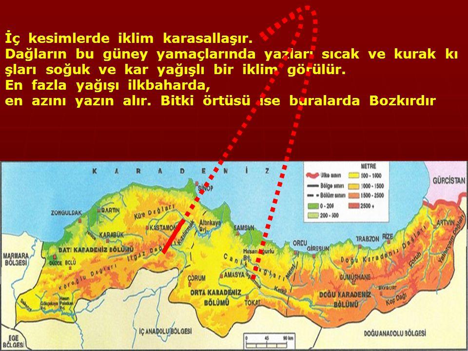 İklim ve Bitki Örtüsü Bölgenin kıyı kesiminde Karadeniz İklimi görülür.