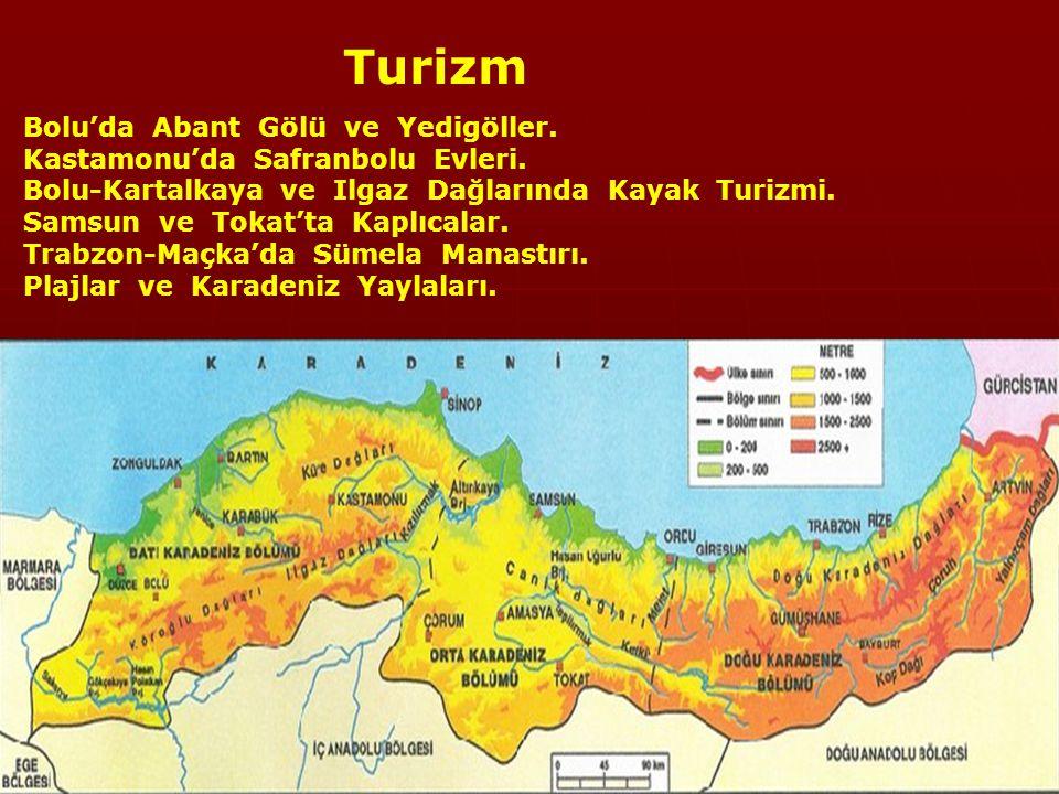 Taşkömürü: Zonguldak, Bartın ve Kastamonu'da Türkiye'de tek.) Bakır: Murgul (Artvin), Küre (Kastamonu), Çayeli (Rize).