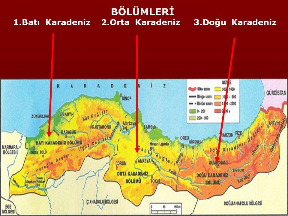 Gürcistan, D.Anadolu, İç Anadolu ve Marmara Bölgesi ve adını aldığı deniz ile komşudur.