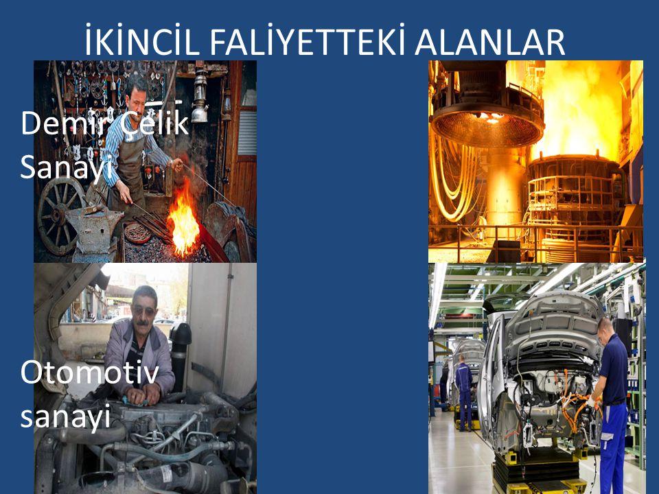 İKİNCİL FALİYETTEKİ ALANLAR Otomotiv sanayi Demir Çelik Sanayi