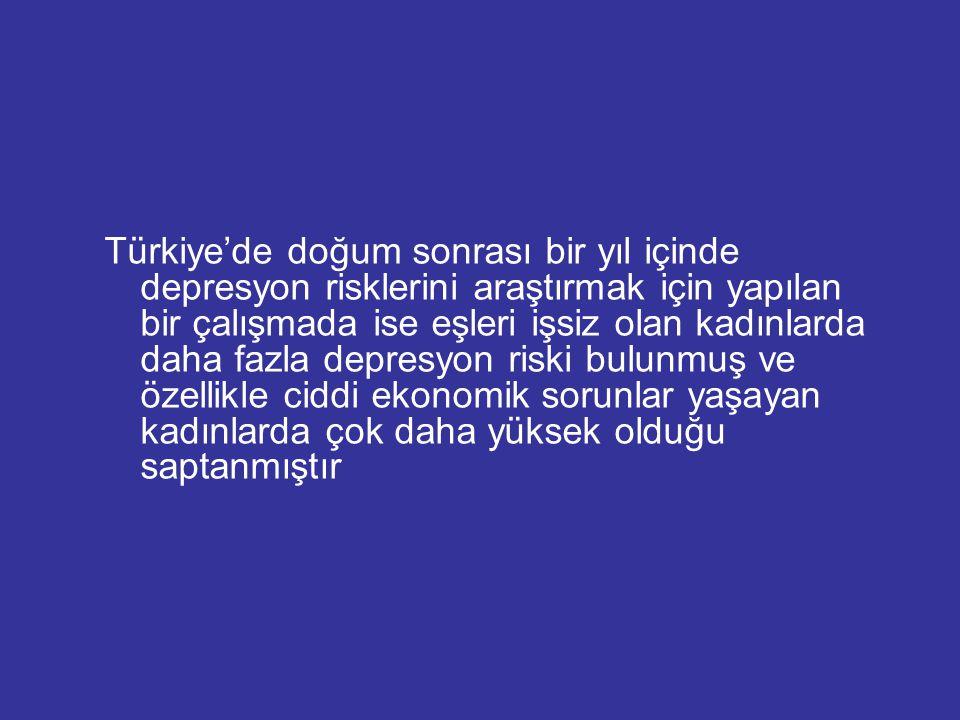 Türkiye'de doğum sonrası bir yıl içinde depresyon risklerini araştırmak için yapılan bir çalışmada ise eşleri işsiz olan kadınlarda daha fazla depresy