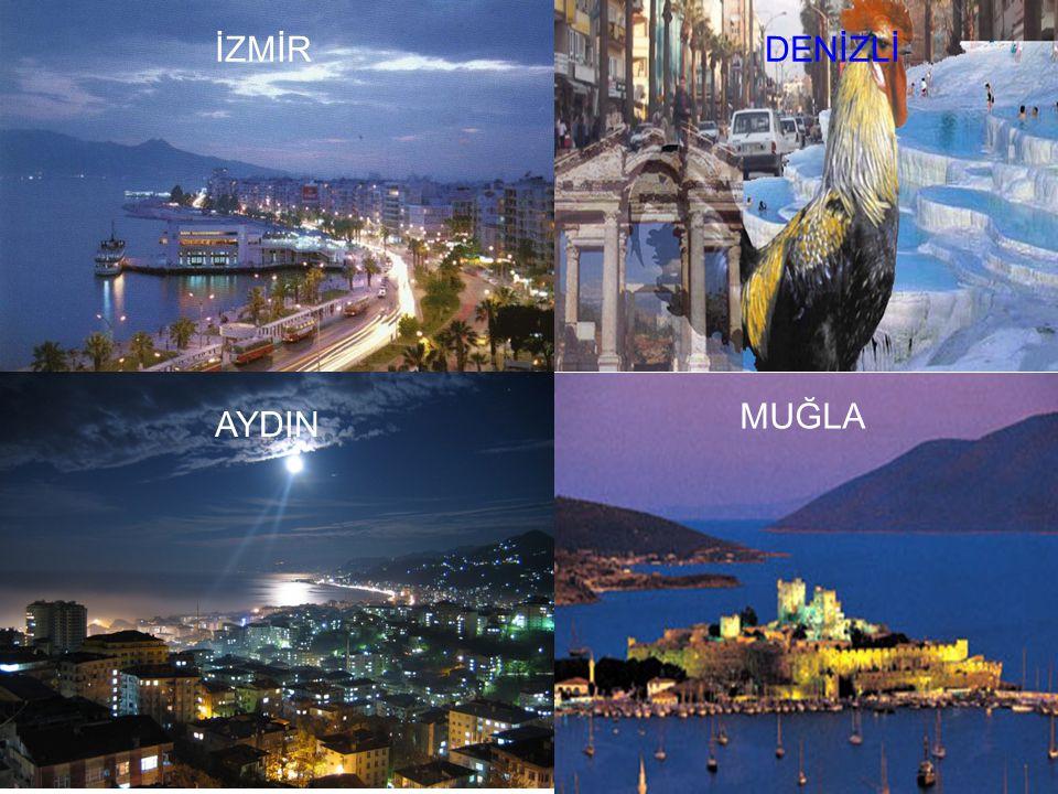 Turizm Bodrum, Marmaris, Çeşme, Ayvalık, Fethiye, Efes, Milet önemli turizm merkezleridir. Doğal güzellikleri, Pamukkale travertenleri, kaplıcalar ve
