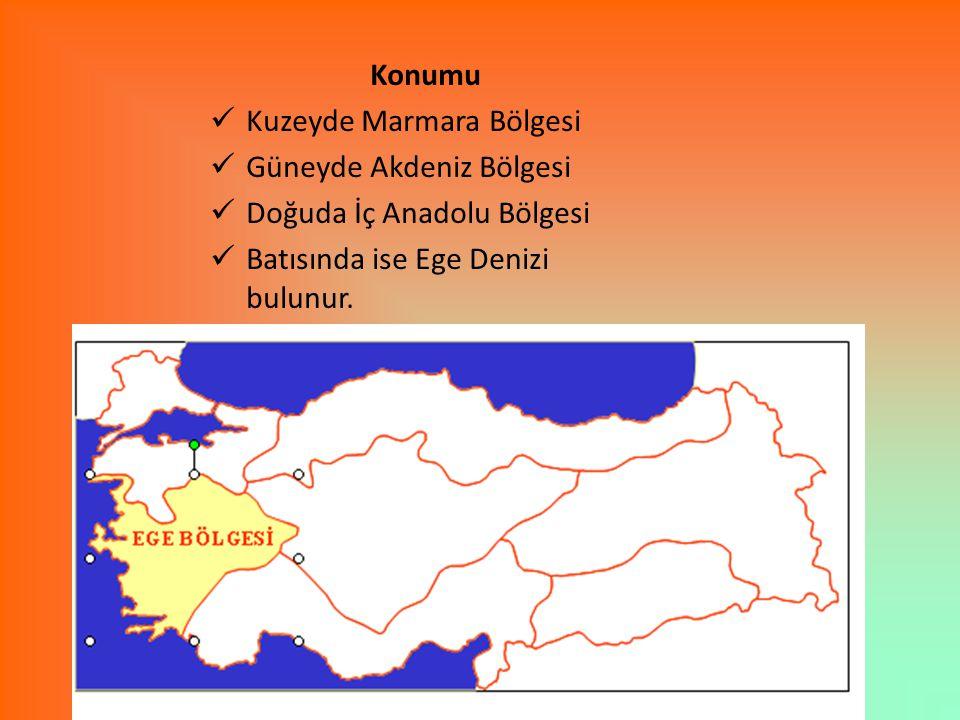 Ege Bölgesi'nde üretilen tarım ürünlerinin Türkiye üretimindeki payları