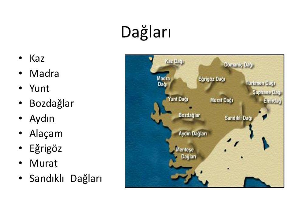 Turizm Bodrum, Marmaris, Çeşme, Ayvalık, Fethiye, Efes, Milet önemli turizm merkezleridir.