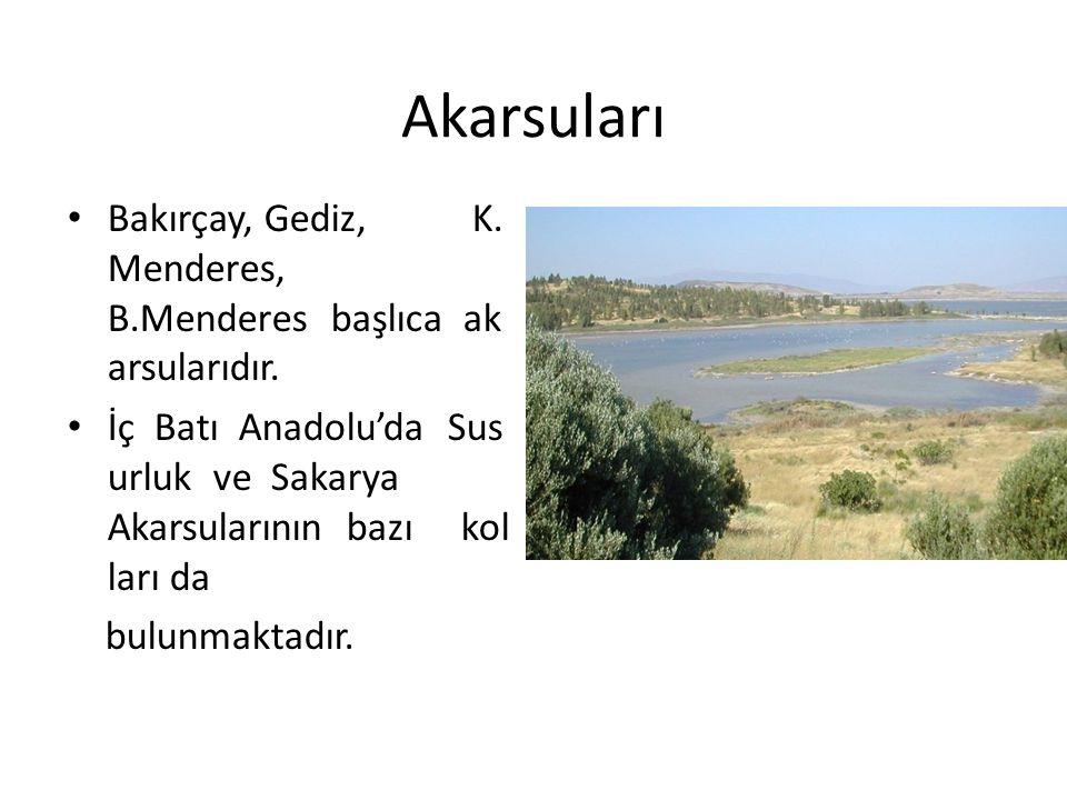 Akarsuları Bakırçay, Gediz, K.Menderes, B.Menderes başlıca ak arsularıdır.