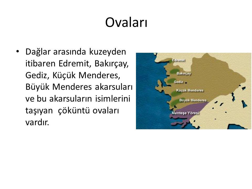 Ovaları Dağlar arasında kuzeyden itibaren Edremit, Bakırçay, Gediz, Küçük Menderes, Büyük Menderes akarsuları ve bu akarsuların isimlerini taşıyan çöküntü ovaları vardır.