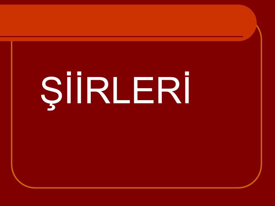 ŞİİRLERİ